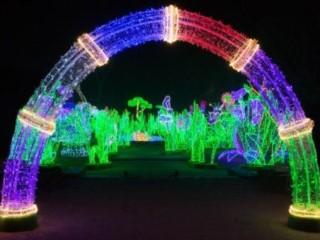 Artykuł Królewski Ogród światła Trójwymiarowe Pokazy W