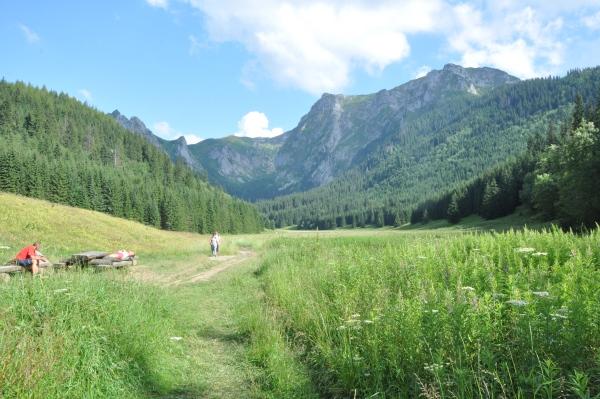 Dolina Małej Łąki - Tatry z dziećmi