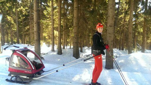 Przyczepka narciarska Nordic Cab w Jakuszycach