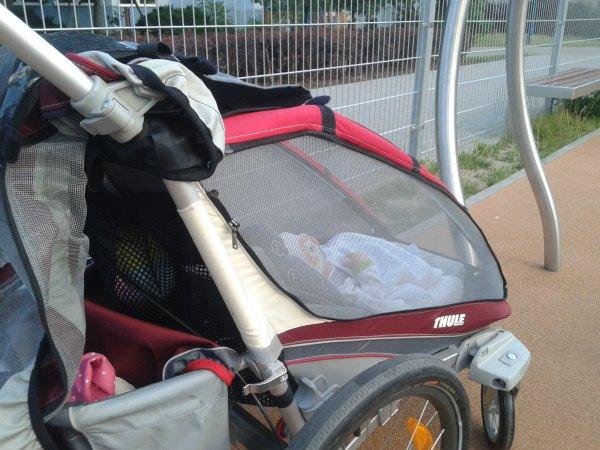 Niemowlak w przyczepce rowerowej