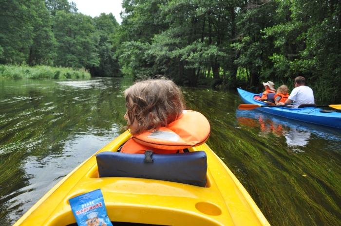 Kajaki z dziećmi na rzece Rospuda