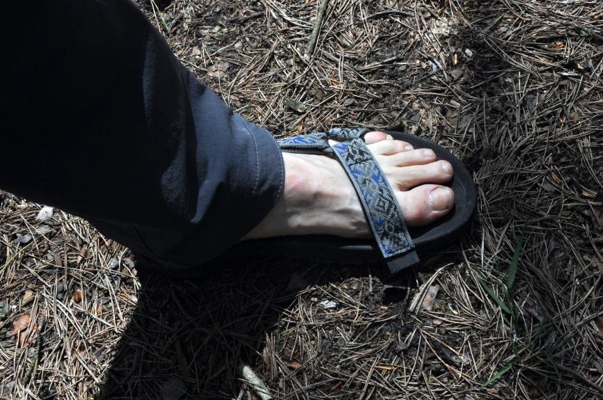 Męskie sandały Teva Winsted podczas spaceru w świętokrzyskich lasach